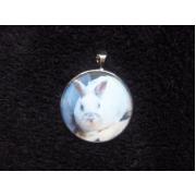 Amulet s vlastním mazlíčkem
