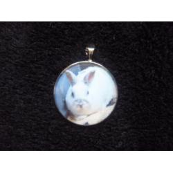 Pryskyřicový amulet s vlastním mazlíčkem