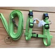 Postroj s vodítkem pro psa zelený