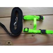 Postroj s vodítkem černý+zelený neon